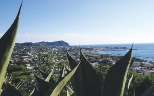 Escursioni Ischia